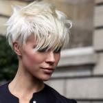 женские стрижки на короткие волосы фото 12