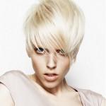 женские стрижки на короткие волосы фото 15