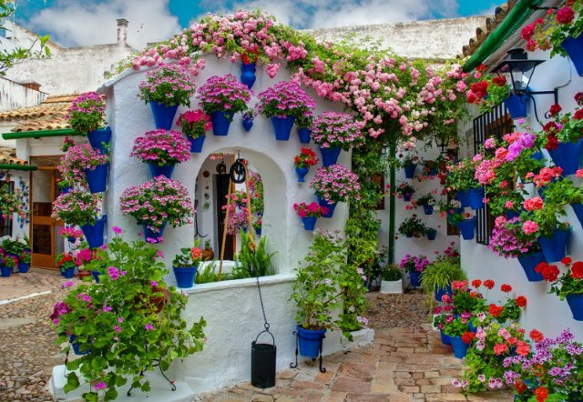 ukrashenie-doma-cvetami2